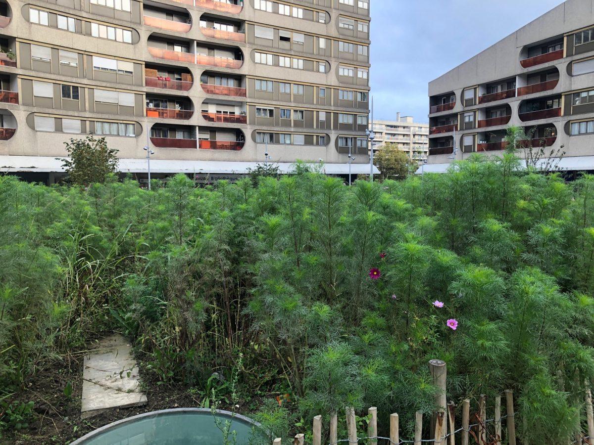 Place haute boulogne billancourt agence august